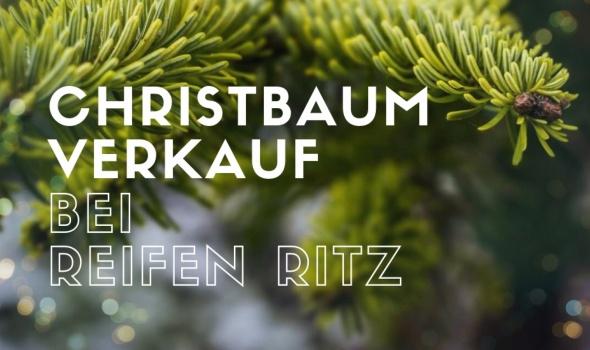 Der Christbaumverkauf startet